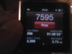 Ipod Nano Nike Fitness