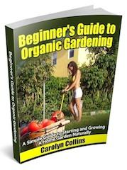 Beginner_Guide_To_Gardening