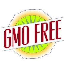 gmo_free