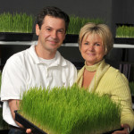 Anca-Iordachianu_Wheatgrass-and-Sprouts