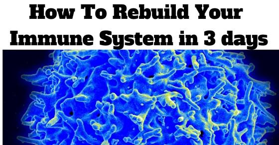How To Rebuild Your Immune System in 3 Days