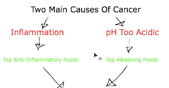 The Top 6 Cancer Prevention Foods Of All Time