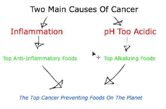 topcancerpreventingfoods