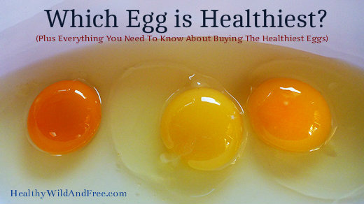 Guess Which Egg is Healthiest? (Plus Everything You NEED To Know About Buying Healthy Eggs)