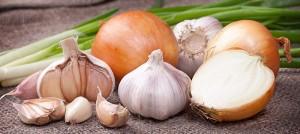 onions_garlic_800x356