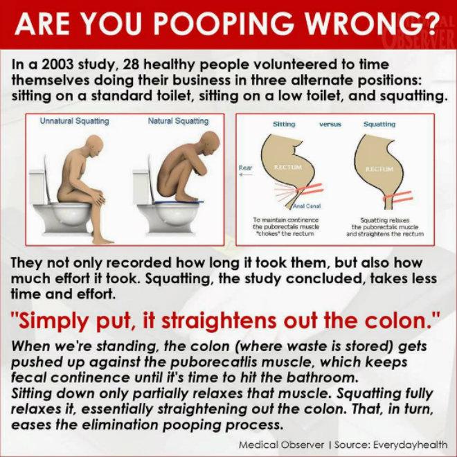 Proper-bowel-movement