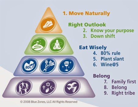 healthybluezonepyramid
