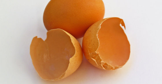 Stop Throwing Your Eggshells Away (Here's 5 Ways To Use And Benefit From Them)