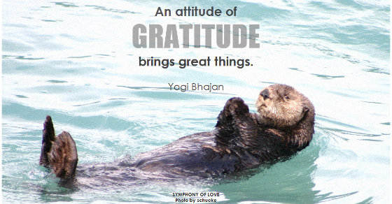 Research Shows Being Grateful Does These 4 Things For Your Health & Happiness