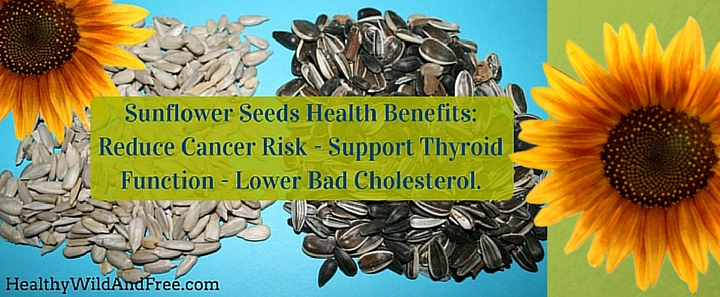 Sunflower Seeds Reduce Cancer Risk, Support Thyroid Function And Lower Bad Cholesterol