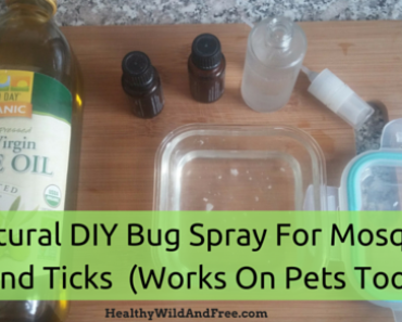 All Natural DIY Bug Spray For Mosquitoes And Ticks (Works On Pets Too!)