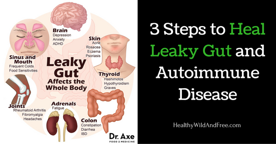 3 Steps to Heal Leaky Gut and Autoimmune Disease