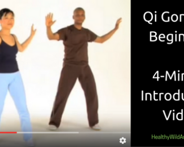 qi-gong-for-beginners-chi-gong-an-introductory-video-healthy-wild-and-free