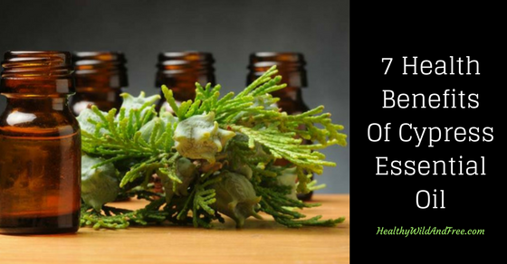 7 Health Benefits Of Cypress Essential Oil