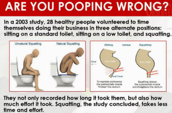 What Is The Proper Way To Poop Read This Before Your