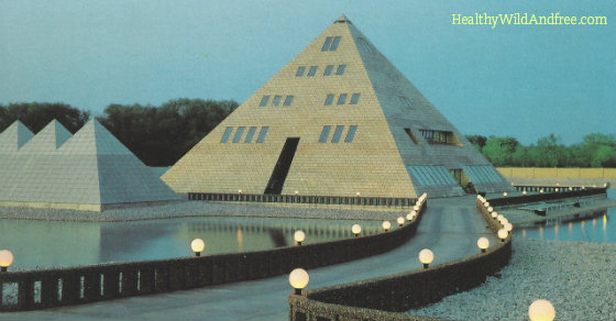 This Man Built A Gold Pyramid Home in Illinois and You Won't Believe What Happend Next