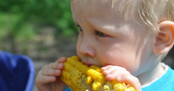 Monsanto Develops Even More Toxic Genetically Induced Drought-Resistant Corn