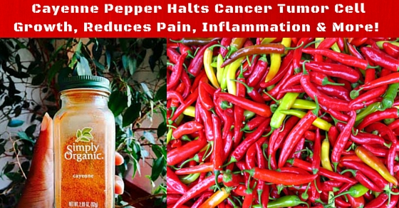 Capsaicin Kills Cancer Tumor Cells and Reduces Pain