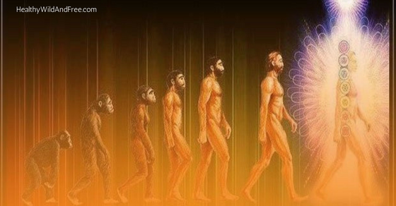5 Signs You're An Evolved Human Being