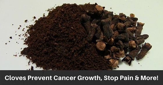 Cloves Stop Cancer Growth As Well As Reduce Pain And Inflammation