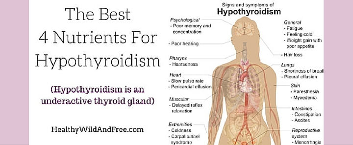 the best 4 nutrients for hypothyroidism