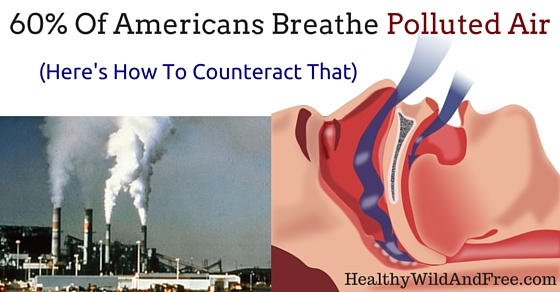 60% Of Americans Breathe Polluted Air (Here's How To Be The 40%)