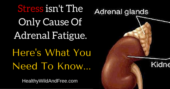 Stress isn't The Only Cause Of Adrenal Fatigue, Here's What You Need To Know