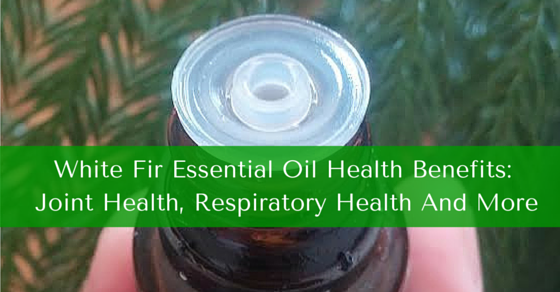 White Fir Essential Oil Health Benefits Include Joint Health, Respiratory Health And More