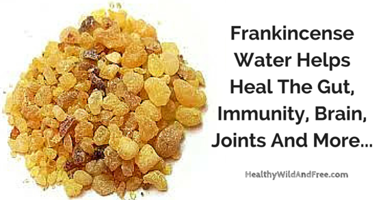 Frankincense Water Helps Heal The Gut, Immunity, Brain, Joints And More