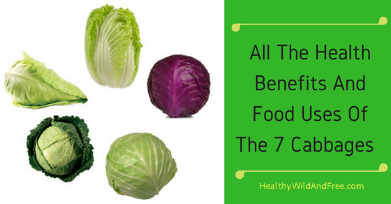 All The Health Benefits And Food Uses Of The 7 Cabbages