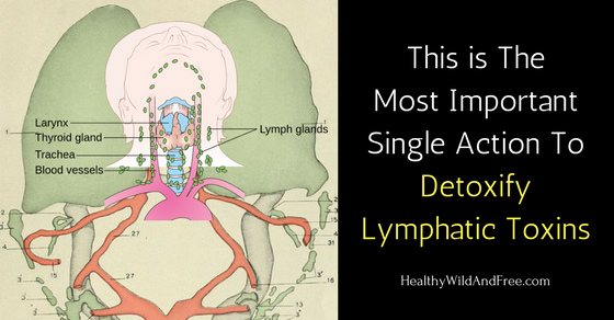 This is The Most Important Action To Detoxify Lymphatic Toxins